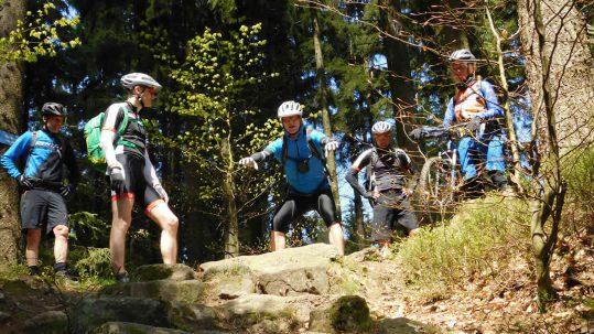 Steinwald MTB-Trail-Tour
