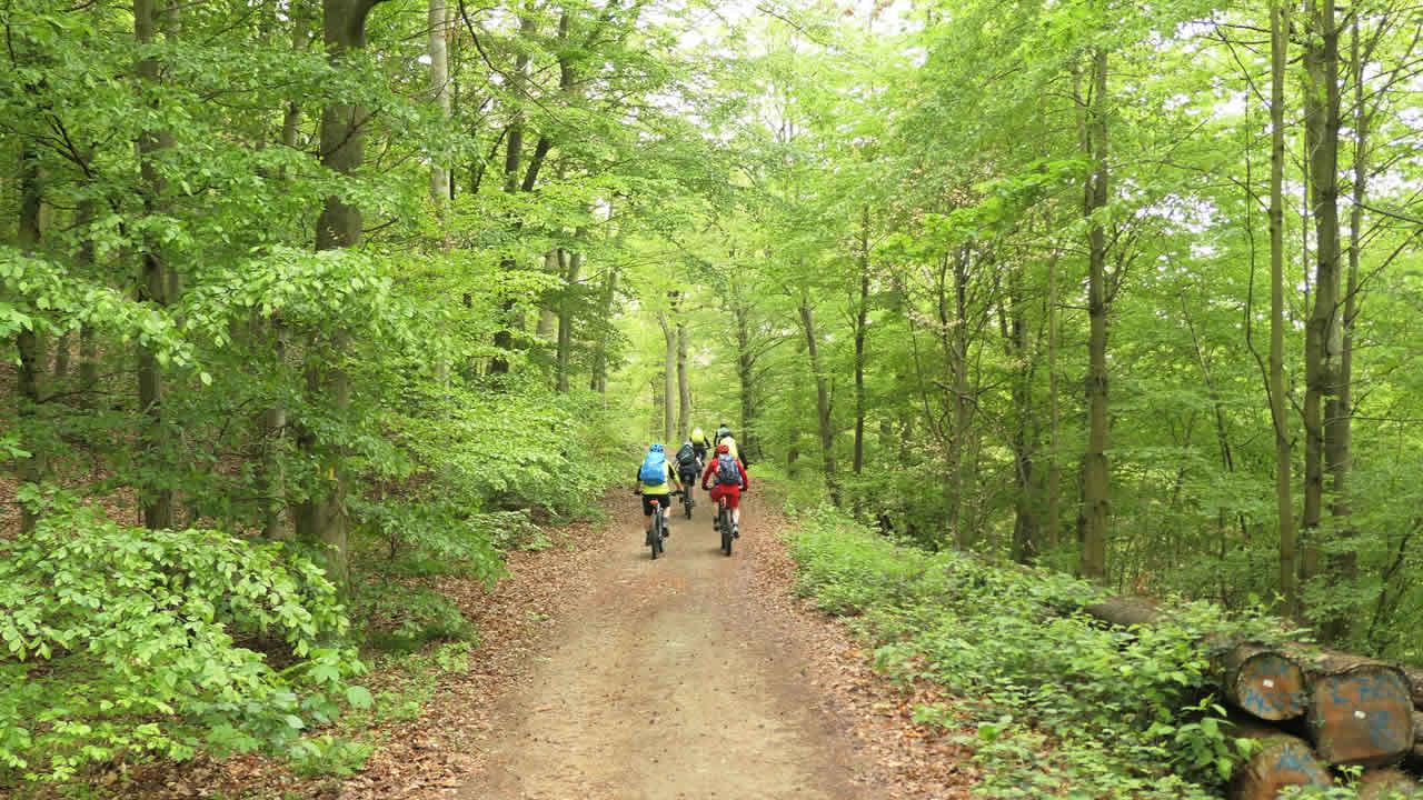 Odenwald – tolle MTB-Region