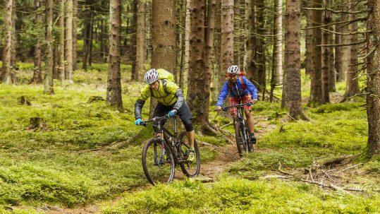 Trans Bayerwald - das große MTB-Abenteuer