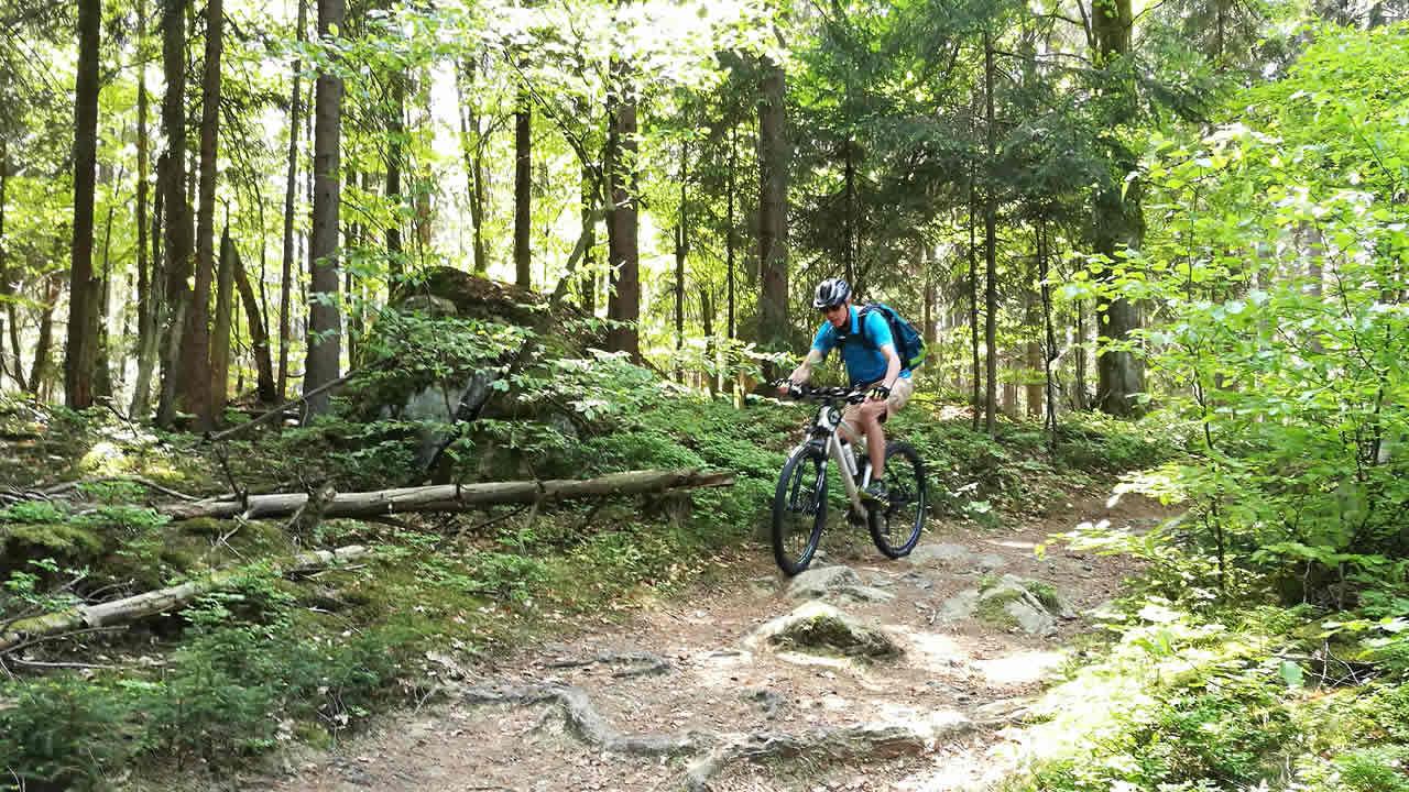 MTB-Trail im Fichtelgebirge