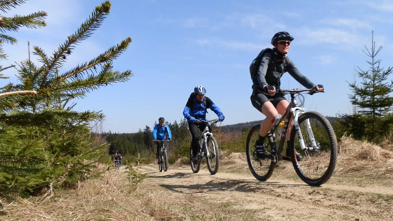 MTB-Tour am Waldstein