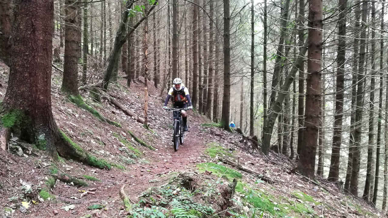 MTB-Trailerlebnis im Frankenwald